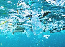 garbage patch witness massive cleanup effort