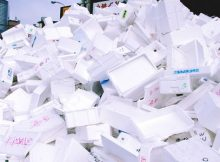 toronto trial project styrofoam recycling