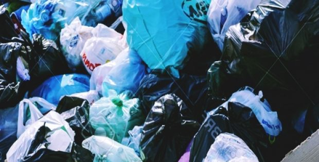 ely plans plastic bag free city center