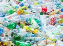 Coca-Cola Company to use enhanced recycling for reusing PET bottles