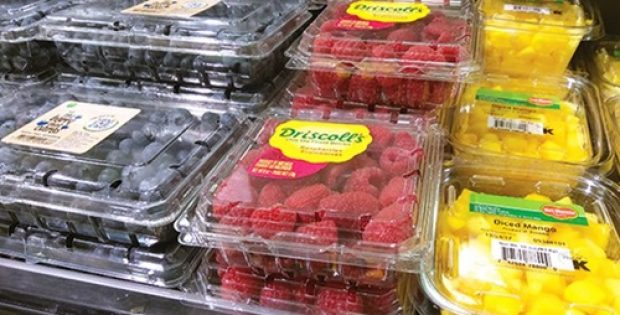 Texas-based London Fruit to offer more products in clamshell packaging