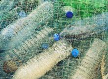 IBM develops highly innovative recycling process to transform plastics
