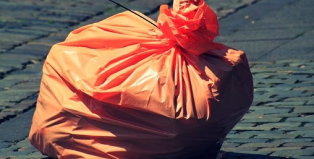 Salmon Arm likely to pioneer plastic bag ban in British Columbia
